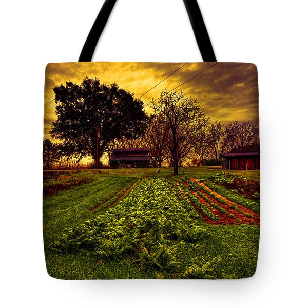 Dreary Farm Day Tote Bag