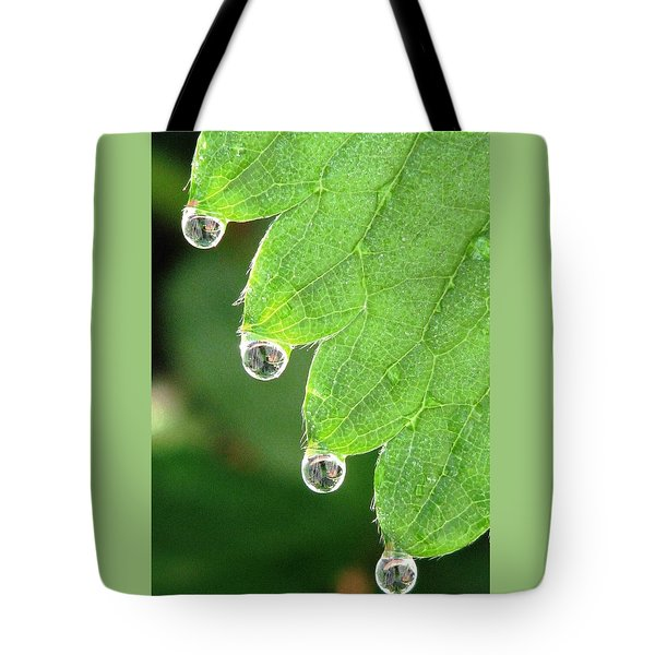 Drenched Tote Bag