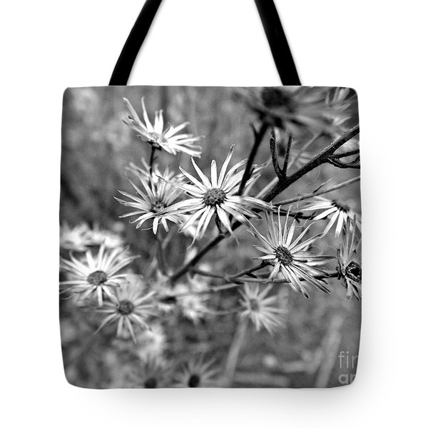 Dried Out Perfection Tote Bag