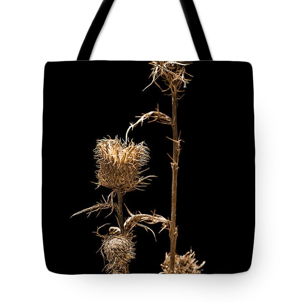 Dried Prairie Blazing Star Tote Bag