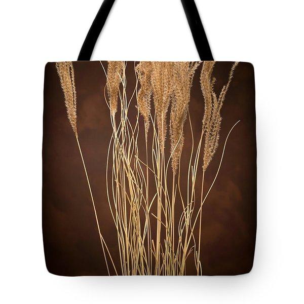 Dried Winter Grasses Tote Bag by Steve Gadomski