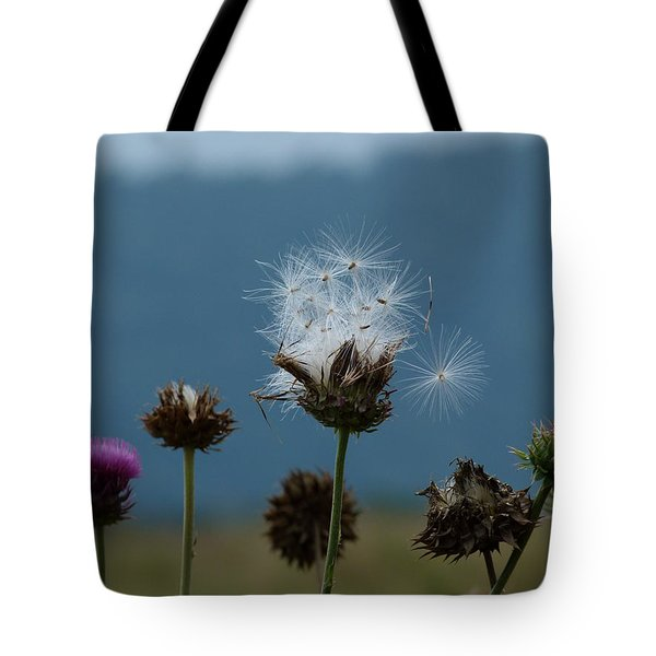Tote Bag featuring the photograph Drifting Off by Jane Ford