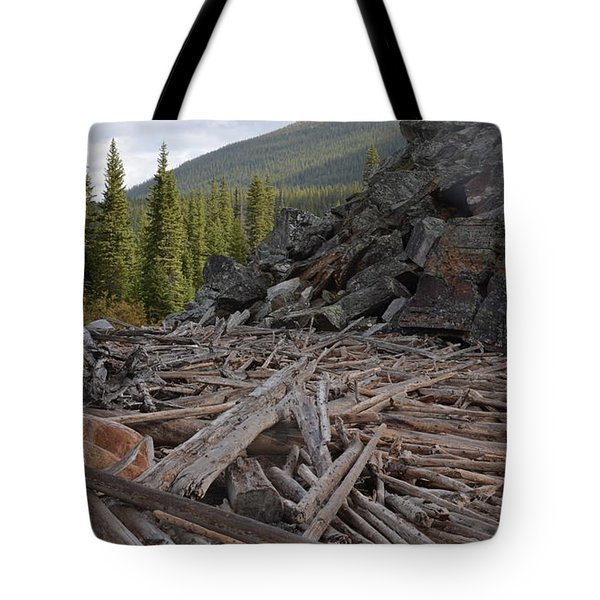 Driftwood And Rock Tote Bag by Cheryl Miller