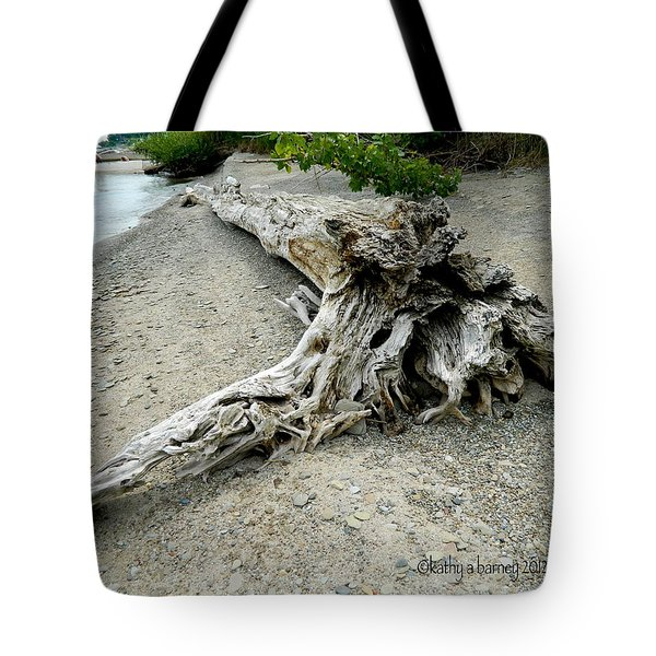Tote Bag featuring the photograph Driftwood At Lake Erie by Kathy Barney