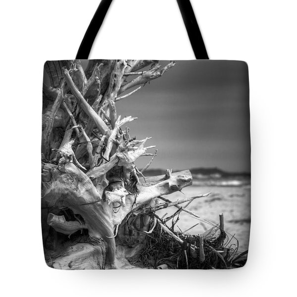 Driftwood At Race Point Tote Bag