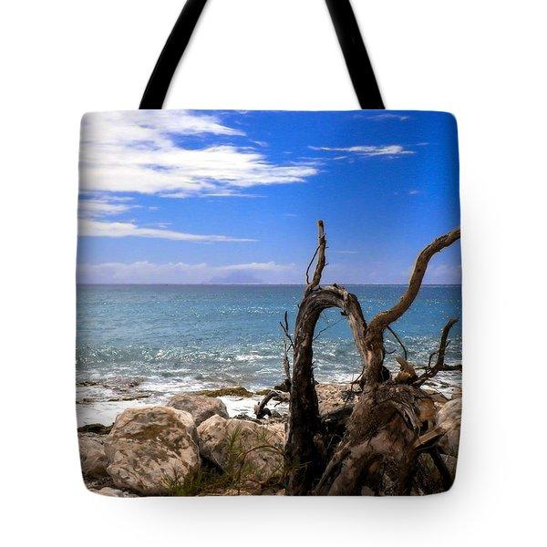 Driftwood Island Tote Bag by Karen Wiles