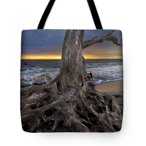 Driftwood On Jekyll Island Tote Bag by Debra and Dave Vanderlaan