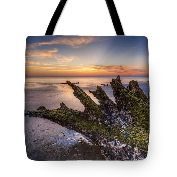 Driftwood On The Beach Tote Bag by Debra and Dave Vanderlaan