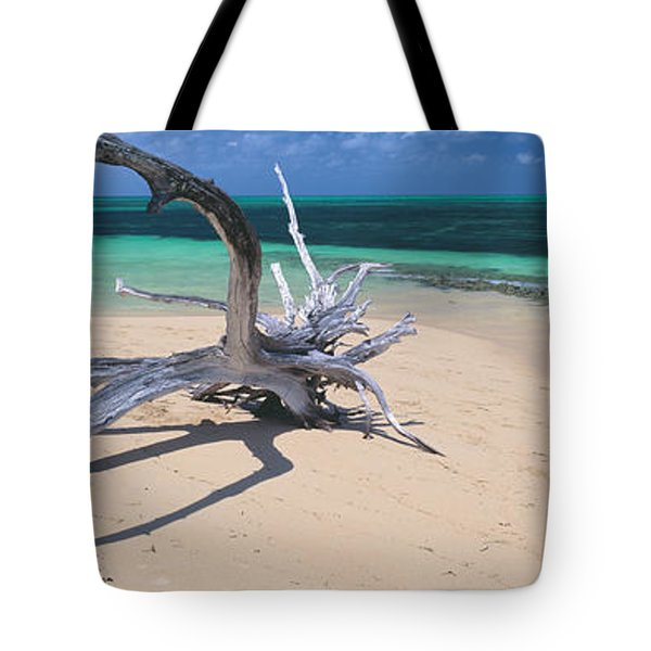 Driftwood On The Beach, Green Island Tote Bag by Panoramic Images