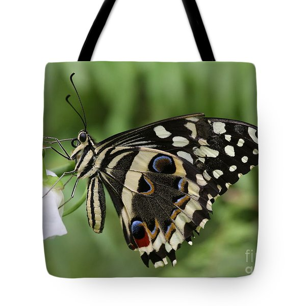 Tote Bag featuring the photograph Drinks With A Giant  Swallowtail by Ruth Jolly