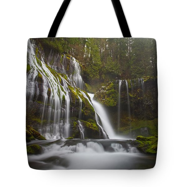 Dripping Wet Tote Bag by Darren  White