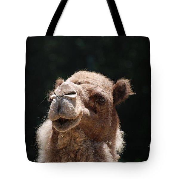 Dromedary Camel Face Tote Bag by DejaVu Designs