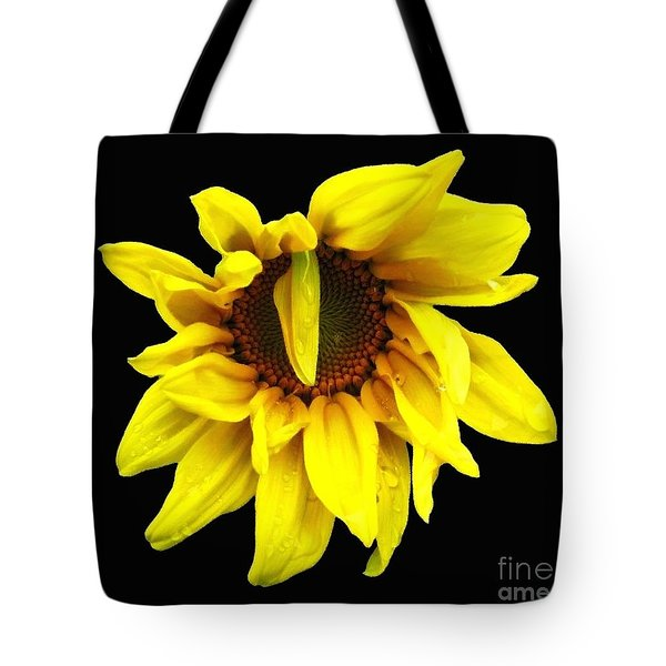 Tote Bag featuring the photograph Droops Sunflower With Oil Painting Effect by Rose Santuci-Sofranko