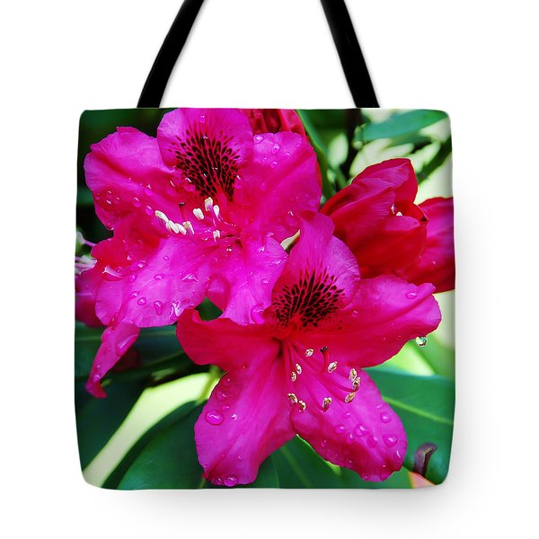 Droplet Tote Bag by Aimee L Maher Photography and Art Visit ALMGallerydotcom