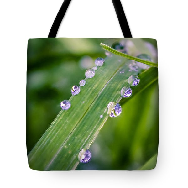 Tote Bag featuring the photograph Drops On Grass by Rob Sellers