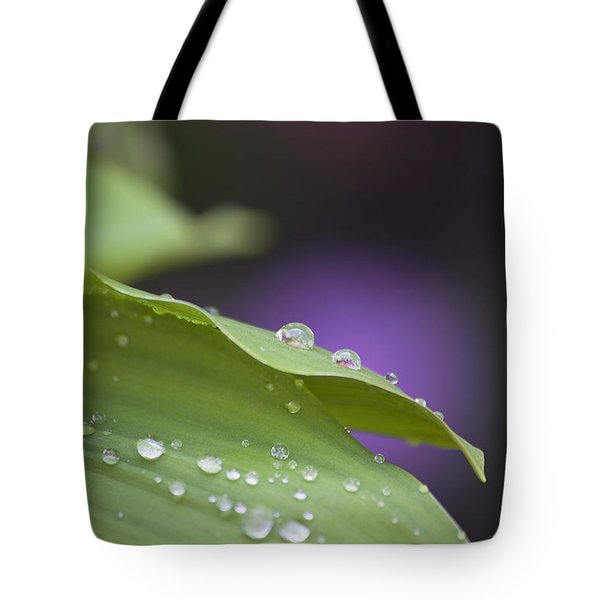 Drops Tote Bag by Thomas Glover