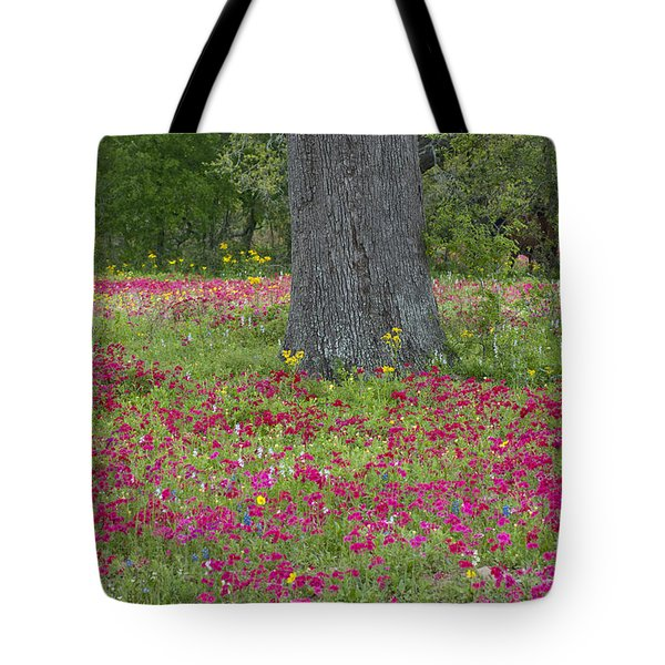 Tote Bag featuring the photograph Drummonds Phlox And Crown Tickweed Central Texas by Dave Welling