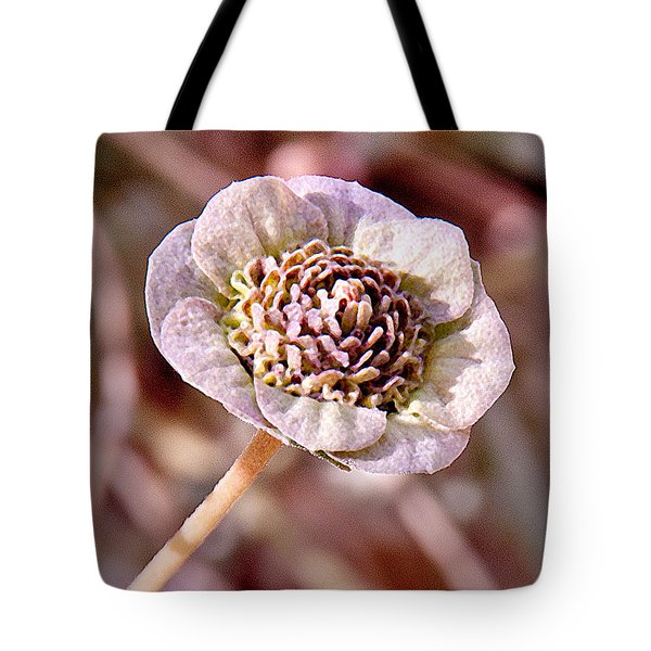 Tote Bag featuring the photograph Dry Bloom by Mae Wertz