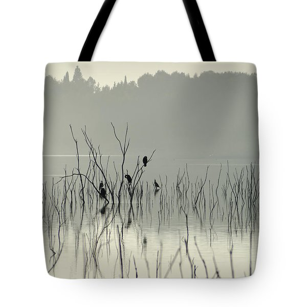 Drying In The Sun Tote Bag by Guido Montanes Castillo