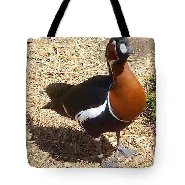 Duck Brown White Black Tote Bag by Susan Garren