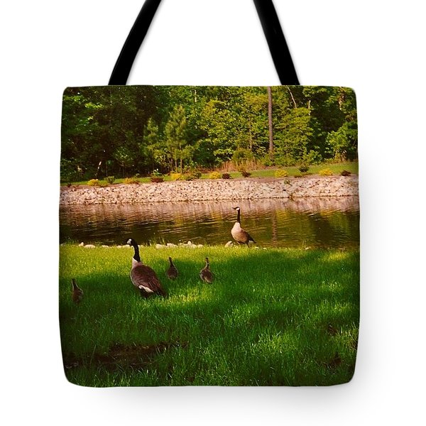 Duck Family Getting Back From Pond Tote Bag