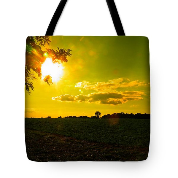 Duck Flying Low Cloud 2 Tote Bag by Nick Kirby