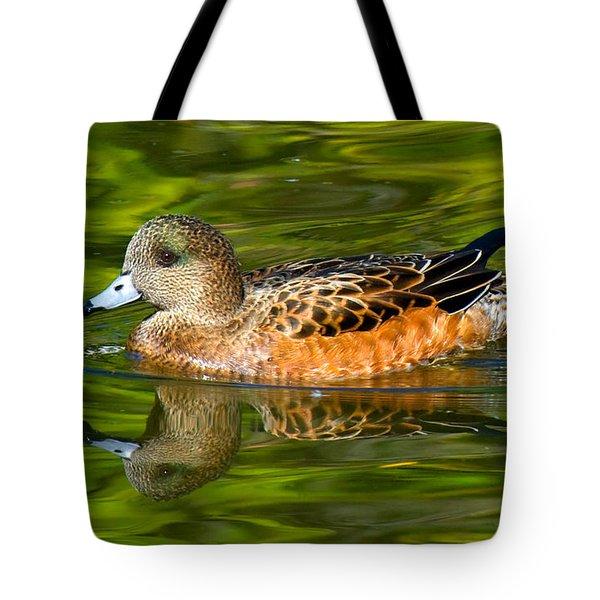 Young Female Mallard Duck Tote Bag