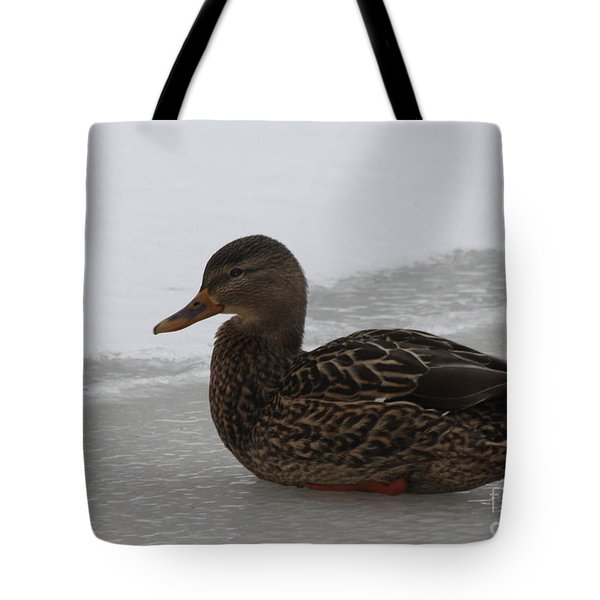 Tote Bag featuring the photograph Duck On Ice by John Telfer