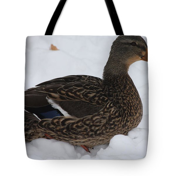 Tote Bag featuring the photograph Duck Playing In The Snow by John Telfer