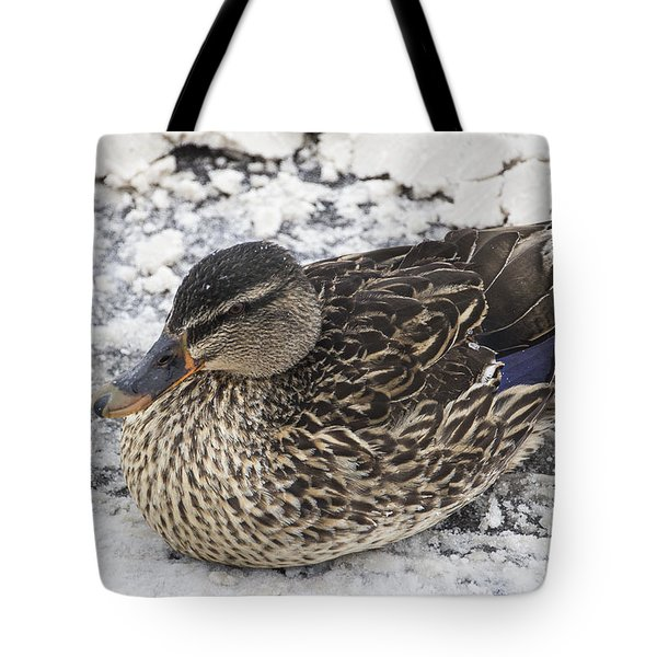 Duck Setting On A Winter Road Tote Bag