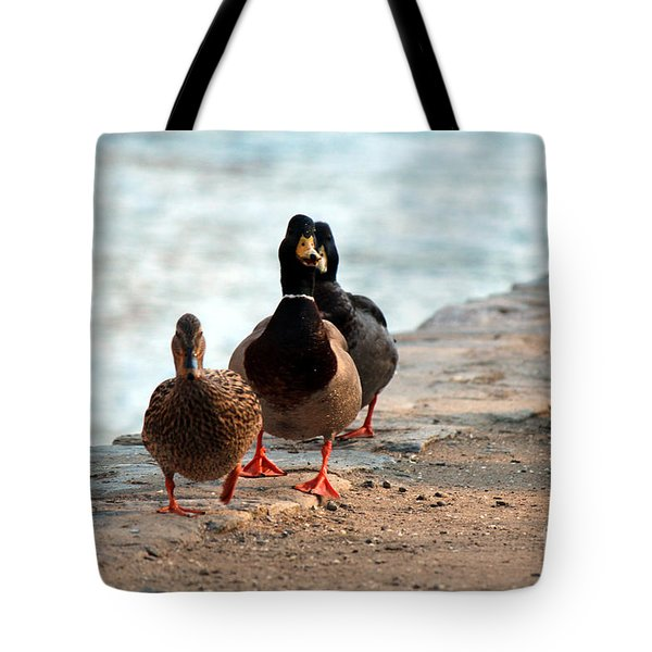 Duck Walk Tote Bag