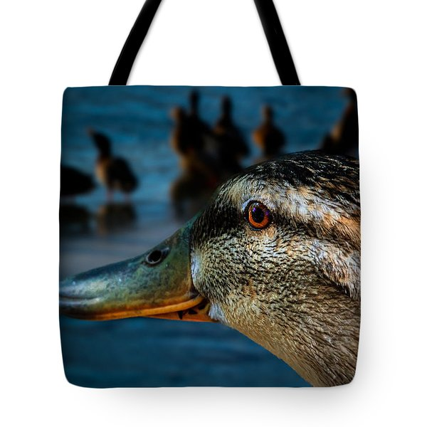 Duck Watching Ducks Tote Bag by Bob Orsillo