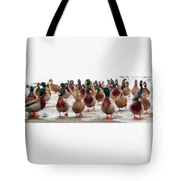 Tote Bag featuring the photograph Duckorama by Bob Orsillo