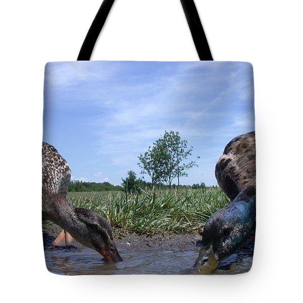 Ducks Eye View Tote Bag