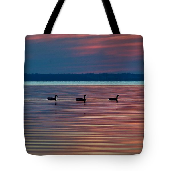 Ducks In A Row Tote Bag