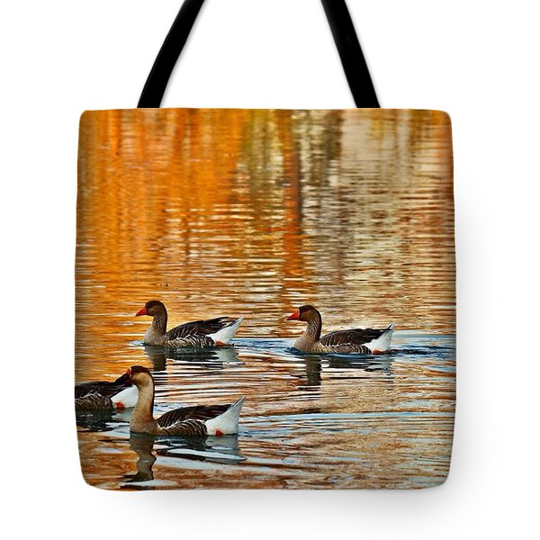 Tote Bag featuring the photograph Ducks In The Fall by Lynn Hopwood
