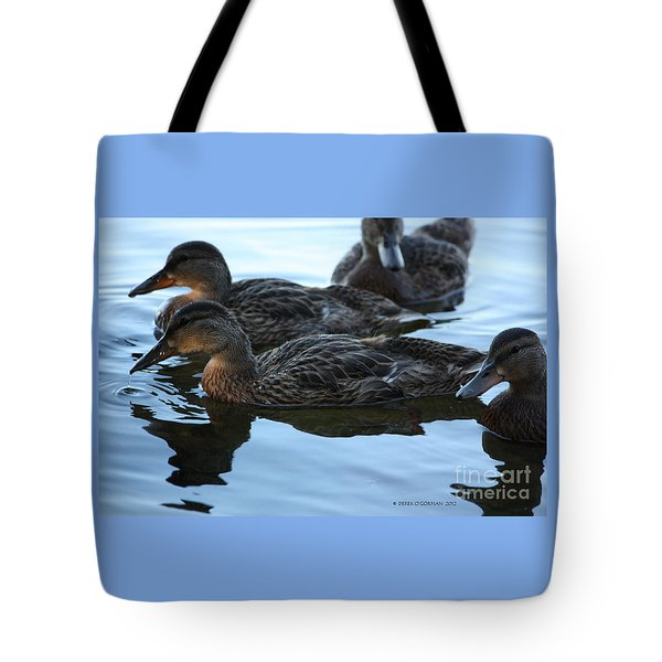 Ducks Reflecting Tote Bag