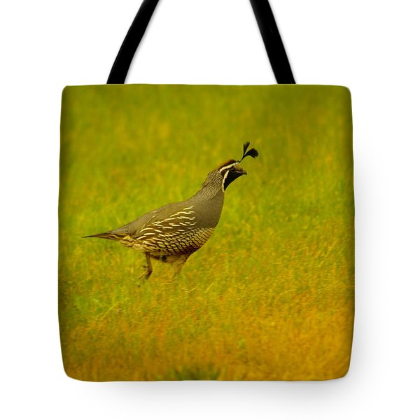 Dude Dont Shoot Me Tote Bag by Jeff Swan