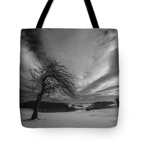 Tote Bag featuring the photograph Duel by Davorin Mance