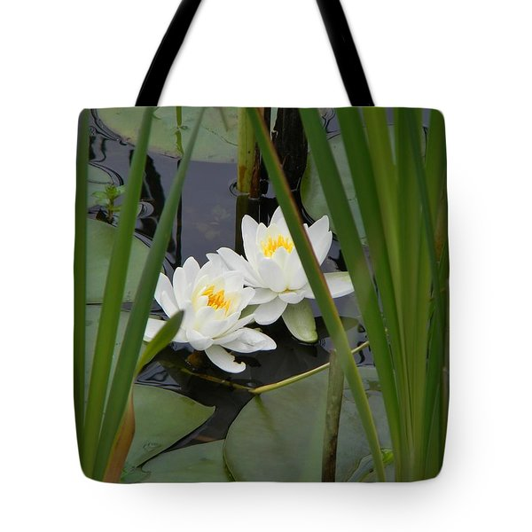 Duet Tote Bag by Jean Goodwin Brooks