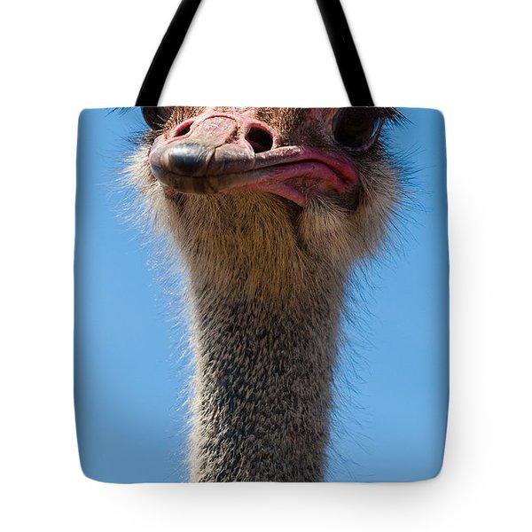 Duh Tote Bag by Jean Noren