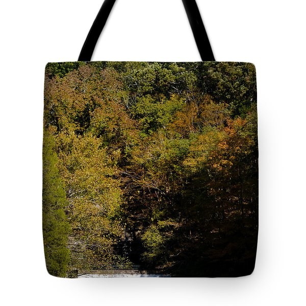 Dunbar Cave And Swan Lake Tote Bag