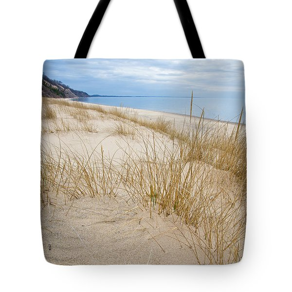 Dune Grass On Lake Michigan Tote Bag