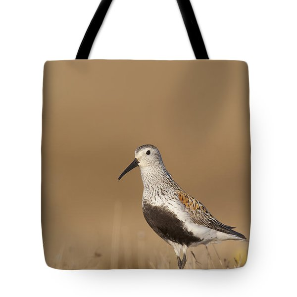 Dunlin Standing On Tundra Of Arctic Tote Bag