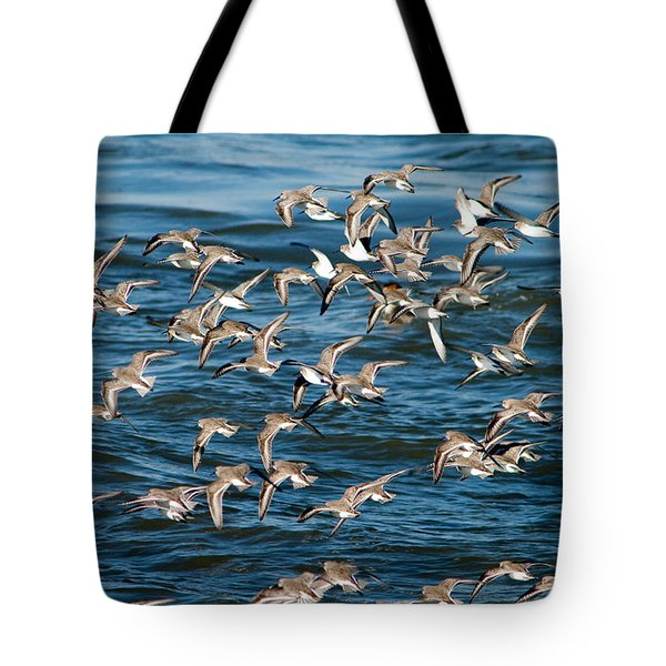 Dunlins In Flight Tote Bag