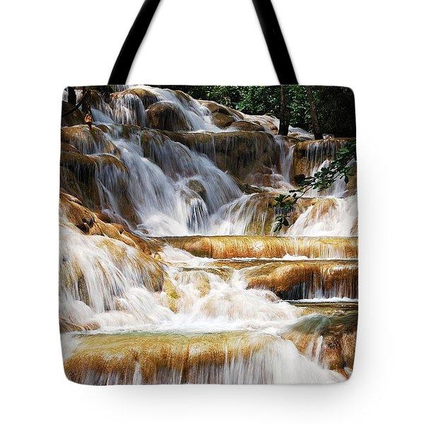 Dunn Falls Tote Bag