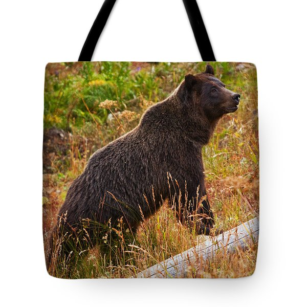 Dunraven Grizzly Tote Bag by Mark Kiver
