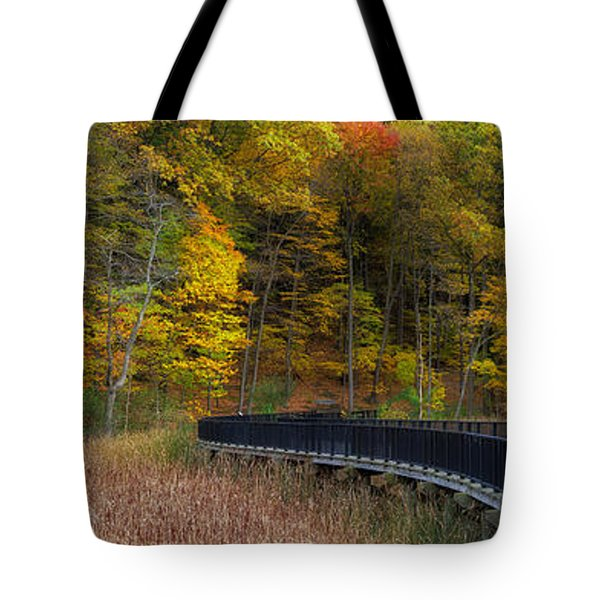 Durand Eastman Park Tote Bag by Mark Papke