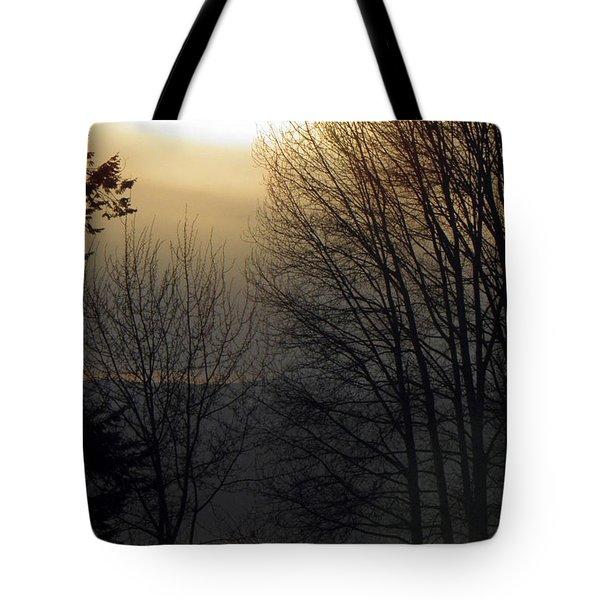 Dusk Tote Bag by Tonya P Smith