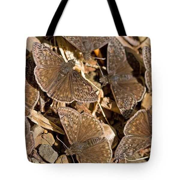 Duskywing Butterflies Tote Bag by Melinda Fawver